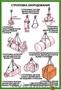 Плакаты по охране труда - Изображение #8, Объявление #1018177