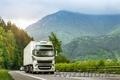 Перевозки импорта из всех стран Европы  - Изображение #9, Объявление #1434851